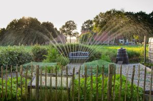 9 Fun Ideas for Water Activities to do with your Children in the Back Garden. Garden sprinklers.